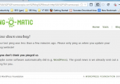 Don't let your blog get banned for excessive pinging of directories.